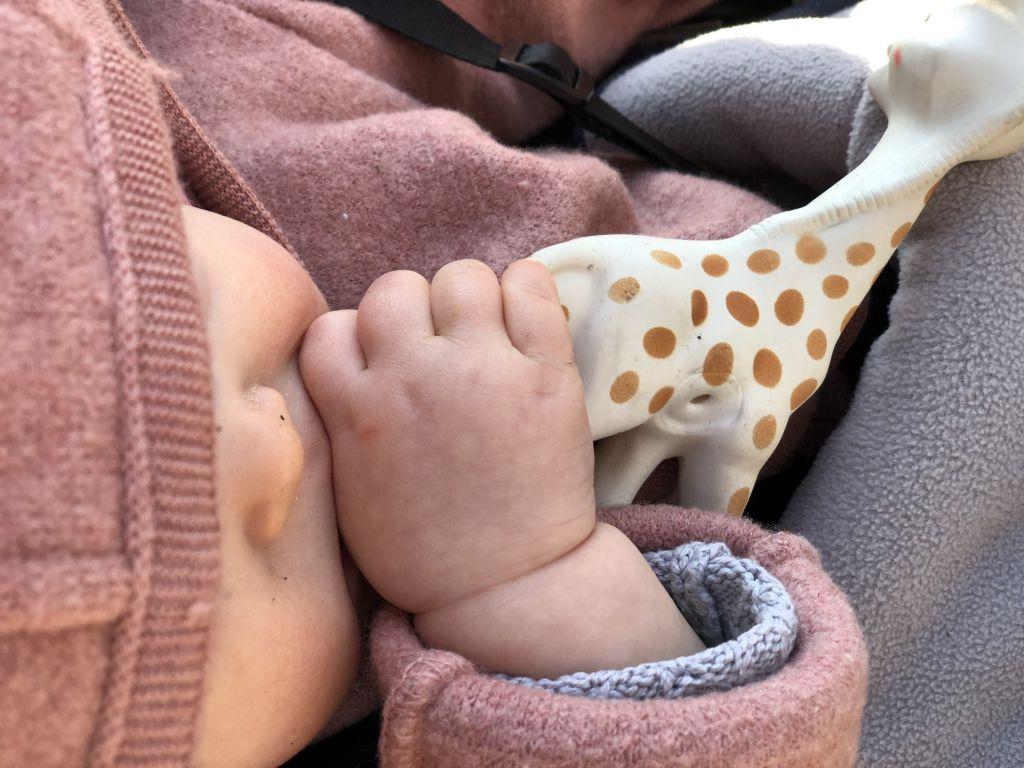 Baby Zahnt Giraffe Sophie